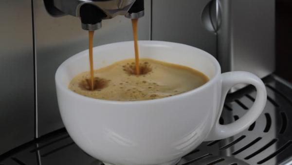 CAFE - SYDNEY - JM0618