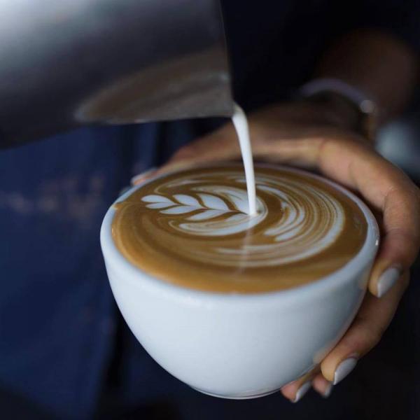 CAFE - PARRAMATTA - 00738