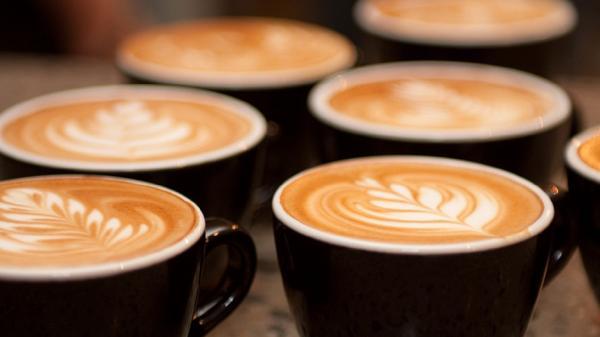 CAFE - CAMPBELLTOWN - JM0619